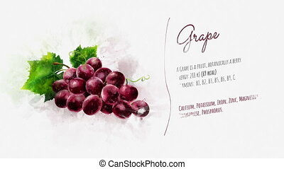 The card about Grape and its description - Animated picture...