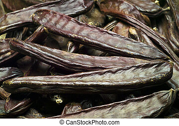 The Carob (Ceratonia siliqua) - The mediterranean carob...