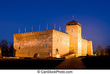 The castle of city Gyula in twilight