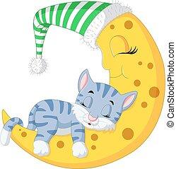 The cat sleep on the moon - illustration of The cat sleep on...