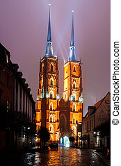 The Cathedral of St. John the Baptist in Wroc?aw at night