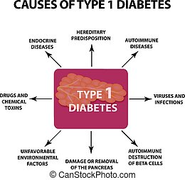 The causes of Diabetes Type 1. Infographics. Vector illustration on isolated background.