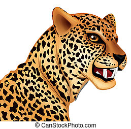 Illustration showing the cheetah
