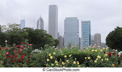 Chicago skyline with flowers in foreground