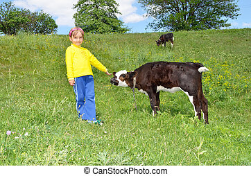The Child and calf, on meadow. The Herb and flowerses.
