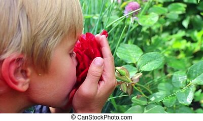 the child enjoys the smell of a rose flower