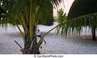 the child having fun runs around palm on the shore of a tropical sea