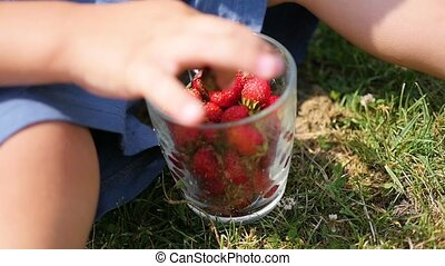 the child sits on the lawn and eats the red berries. close-up hand. garden berries Victoria