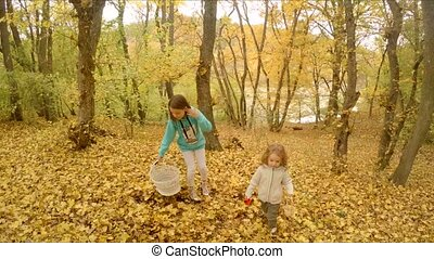 The children stopped in the woods to play with the leaves.