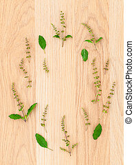 The circle of  holy basil leaf and flower on wooden background.