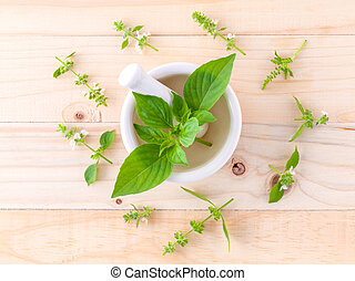 The circle of lemon basil( hairy basil ) leaf and flower on ...