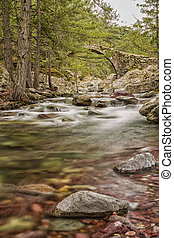 The clear mountain waters of the Tartagine river flow under ...