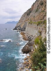 The cliff of Manarola, Cinque Terre