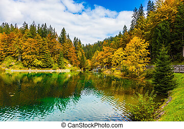 The cloudy sky and forests - The water reflects the cloudy...