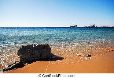 the coast of sharm el sheikh in Egypt