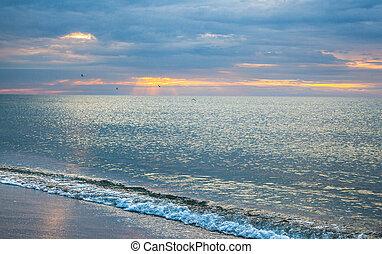 The coast of the Black Sea