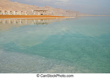 The coast of the Dead Sea in the morning on a sunny day