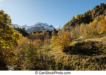 color of autumn at the Pyrenees mountains