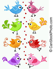 The colorful birds in a situation