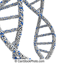 The combined structure DNA molecules in the form of beads