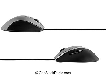 The computer mouse. It is isolated on a white background