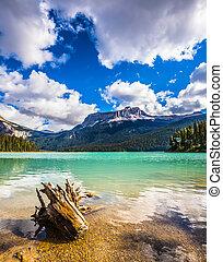 The concept of eco-tourism. Yoho National Park in Canada....