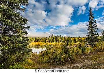 Patricia Lake among the pines - The concept of ecotourism. ...