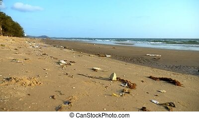 The concept of environmental pollution. coastal trash on the...