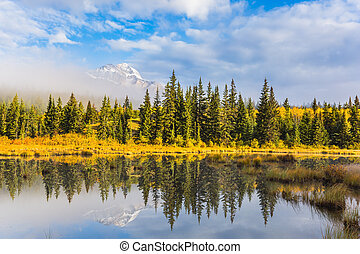 The concept of extreme and ecotourism. Cloudy morning in the Rocky Mountains. Patricia Lake among the firs and pines. Water reflects the sky