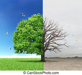The concept of life and death. Dead and live tree at...