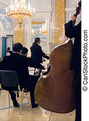 the concert of the classical music - the orchestra concert...
