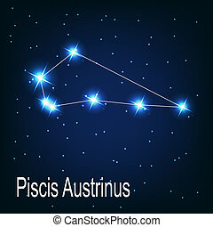 "The constellation ""Piscis Austrinus"" star in the night sky. Vector illustration"