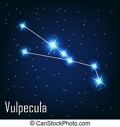 "The constellation "" Vulpecula"" star in the night sky. Vector illustration"