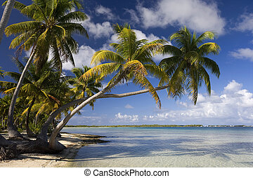 Tropical paradise of Aitutaki Lagoon in the Cook Islands in the South Pacific Ocean.