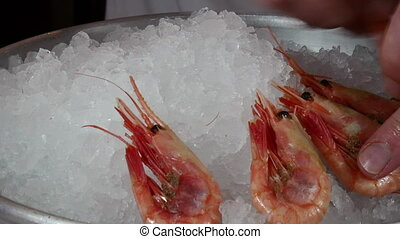 The cook prepares dish of boiled shrimp on ice. - The cook...