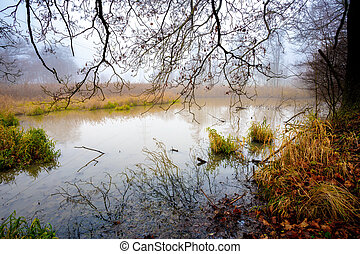 The cool autumn morning at the pond