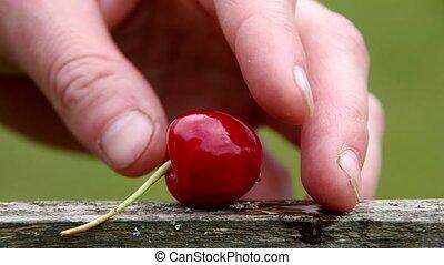 The core of cherries - Cherry and the core of cherries