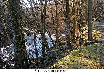 The Correze River, near the village of Correze, Limousin, France.