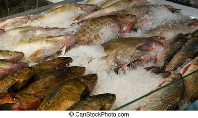 The counter of the fish at the market