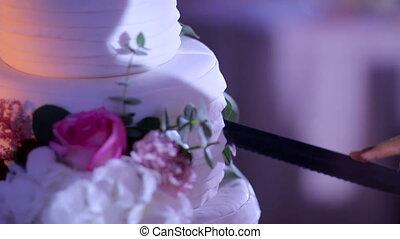 couple cut a large wedding cake