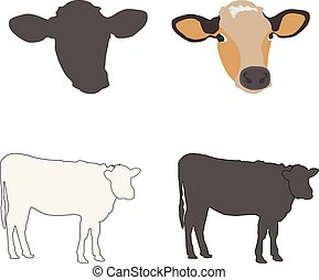 cow face and body vector illustration