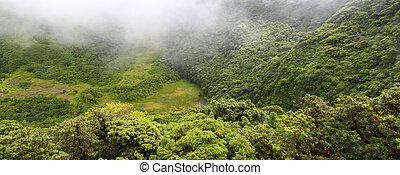The Crater - Saint Kitts