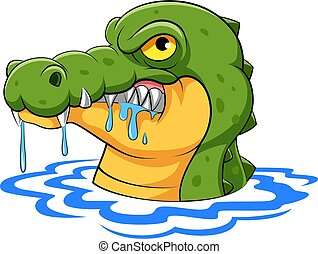 The crocodile with the sharp teeth come out from the water