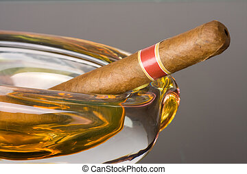 cuban cigar in ashtray - the cuban cigar in ashtray