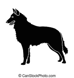 The dark Belgian wolf. Belgium single icon in black style vector symbol stock illustration.