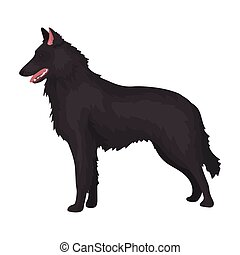 The dark Belgian wolf. Belgium single icon in cartoon style vector symbol stock illustration.