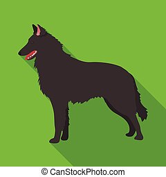 The dark Belgian wolf. Belgium single icon in flat style vector symbol stock illustration.