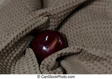 The dark red apple is irregularly shaped in a smoky waffle towel.