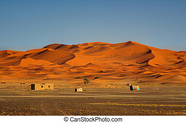edge of the Sahara Desert
