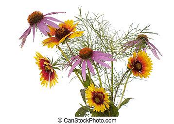 The decorative garden flowers
